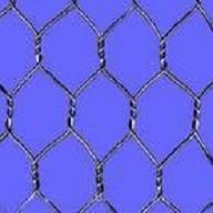 Galvanised Hexagonal Wire Mesh (Chicken Wire Mesh)